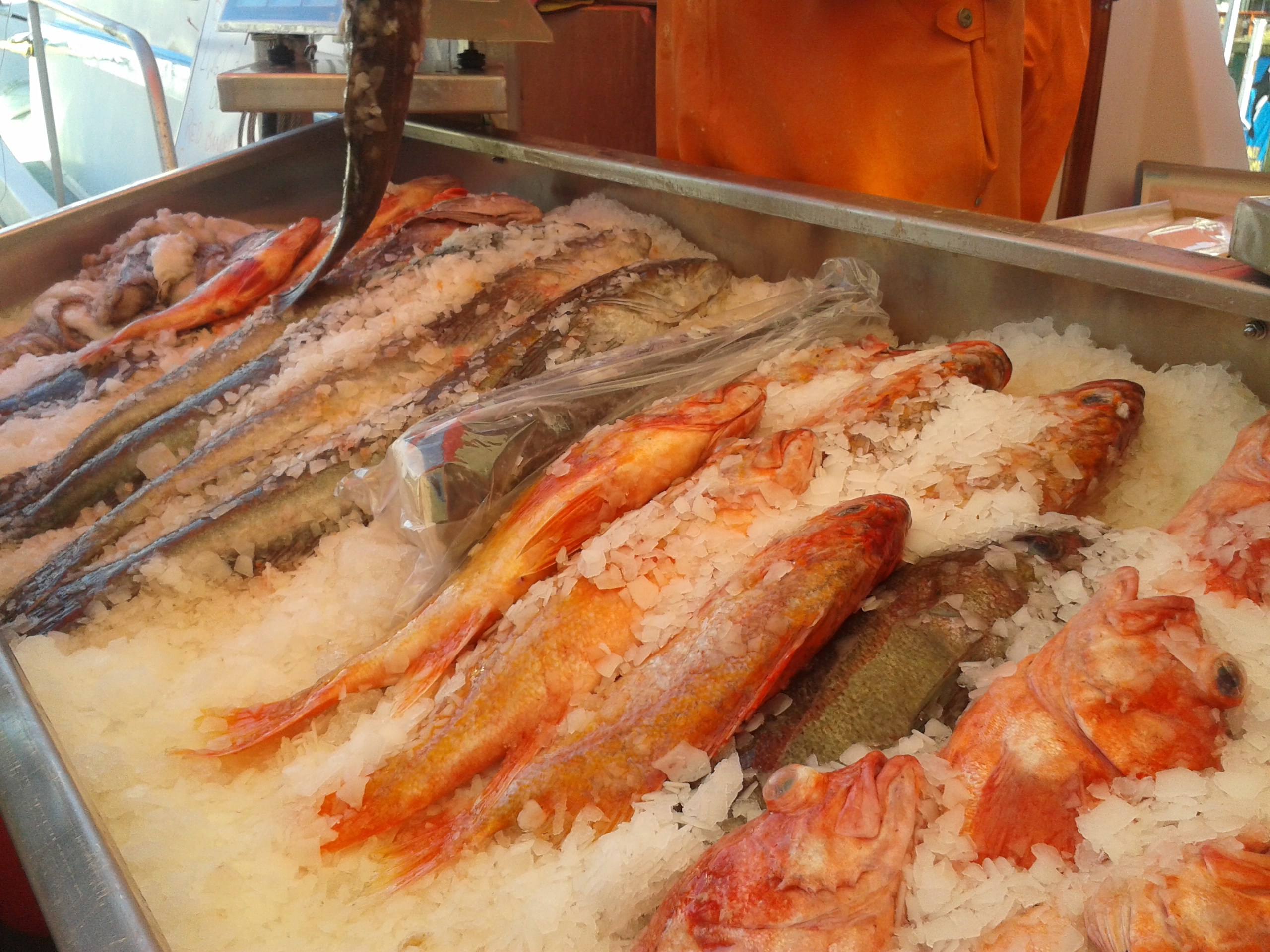 Rockfish on right - Hillis Bros, Fisherman's Wharf