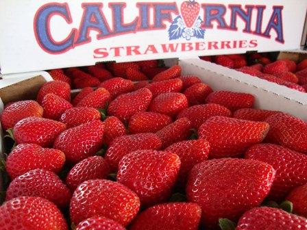 strawberries slo