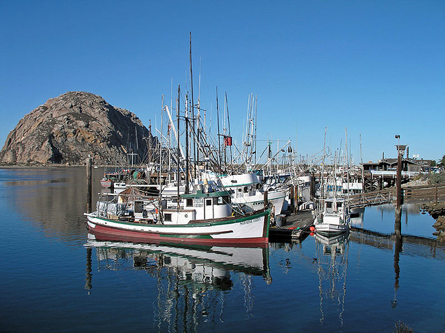 Morro Bay Fisherman, Mark Tognazzini