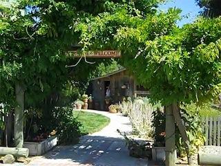 Herbal Farm