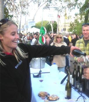 SLO Vintners Harvest Celebration