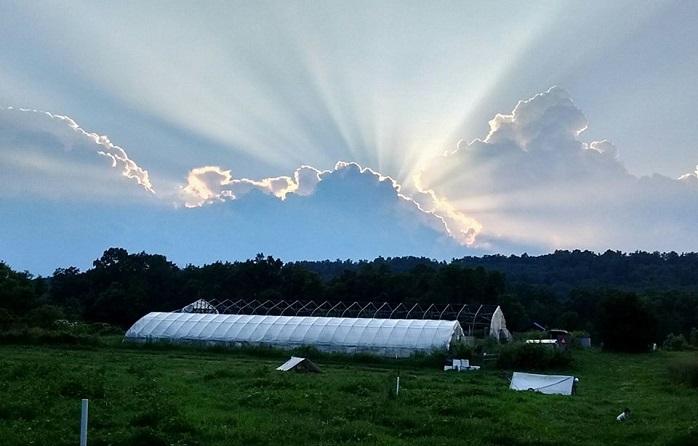 Photo courtesy of Sunnyside Farm