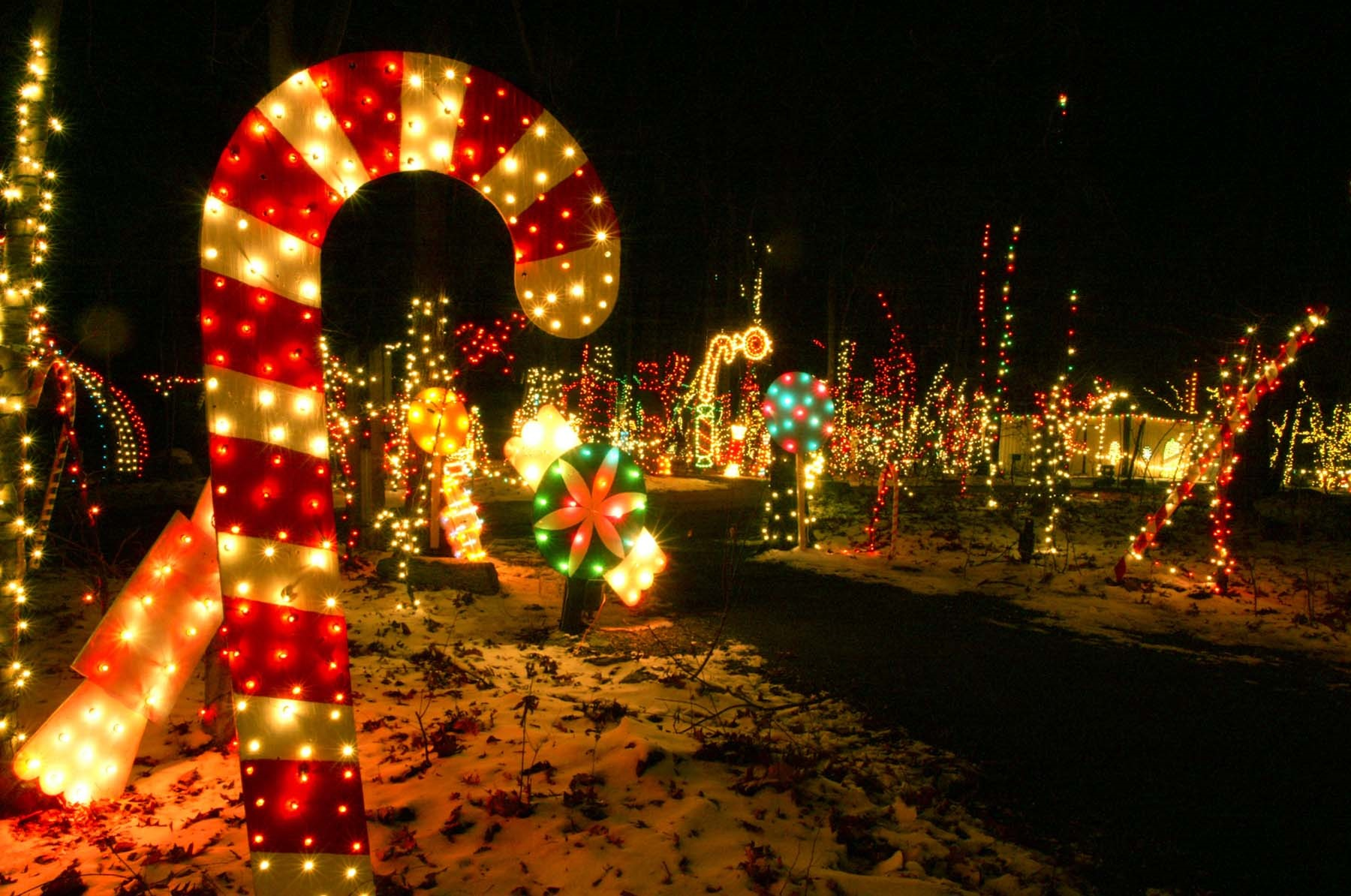 Wander through thousands of holiday lights during Christmas Magic at Rocky Ridge County Park.
