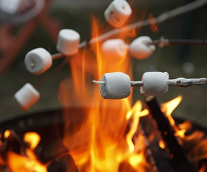 Marshmallows roasting over a bonfire