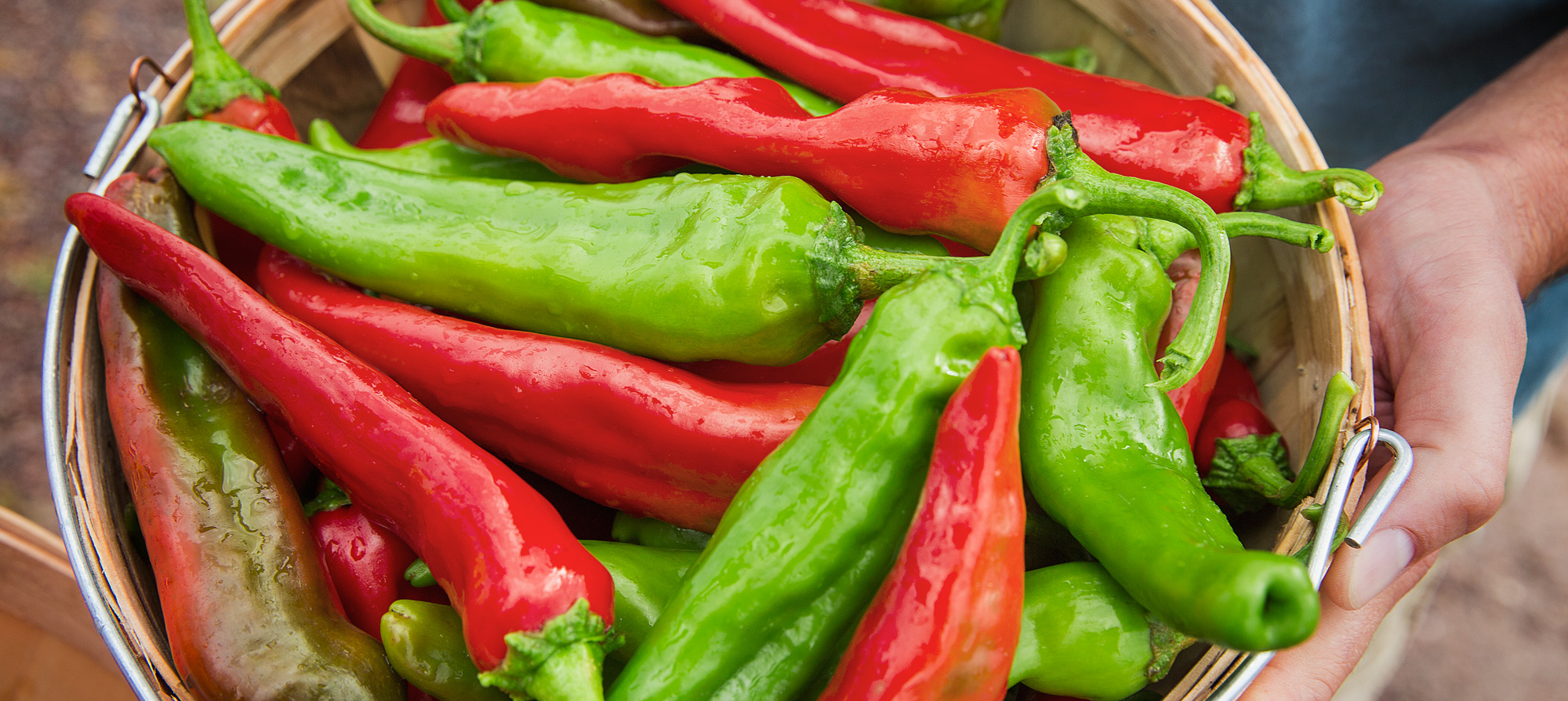 Hatch Chile Festival 2020.Hatch New Mexico Tourism Travel Vacation Guide