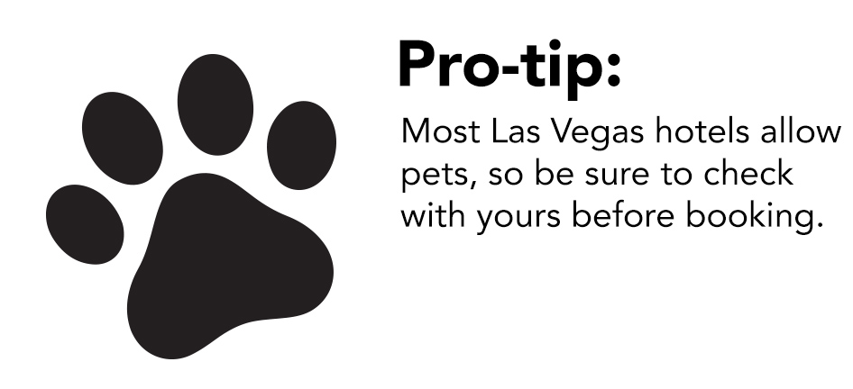 Las Vegas Pet Friendly Hotels Restaurants Things To Do