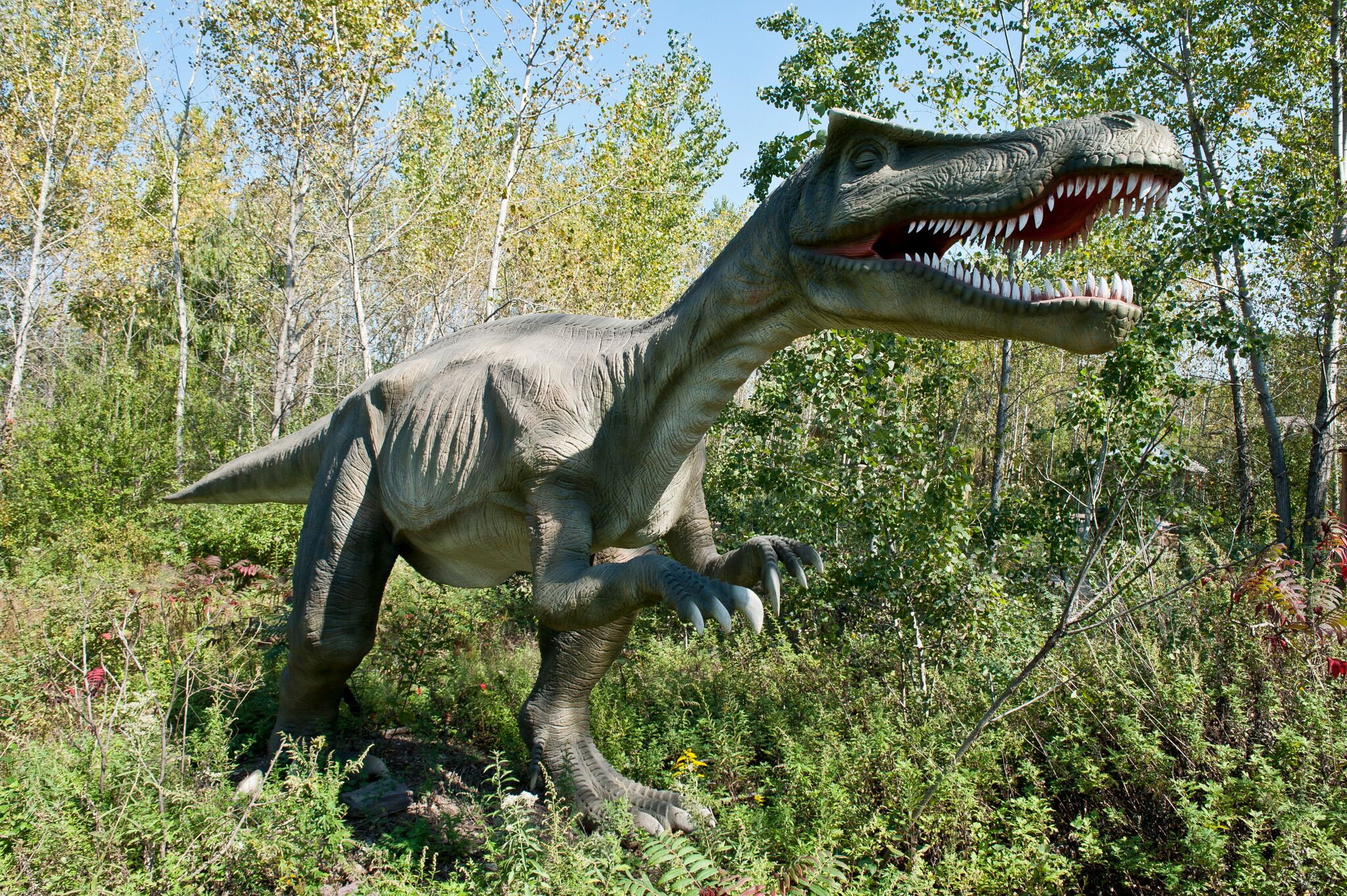 Largest dinosaur theme park opens in Wichita | Attractions