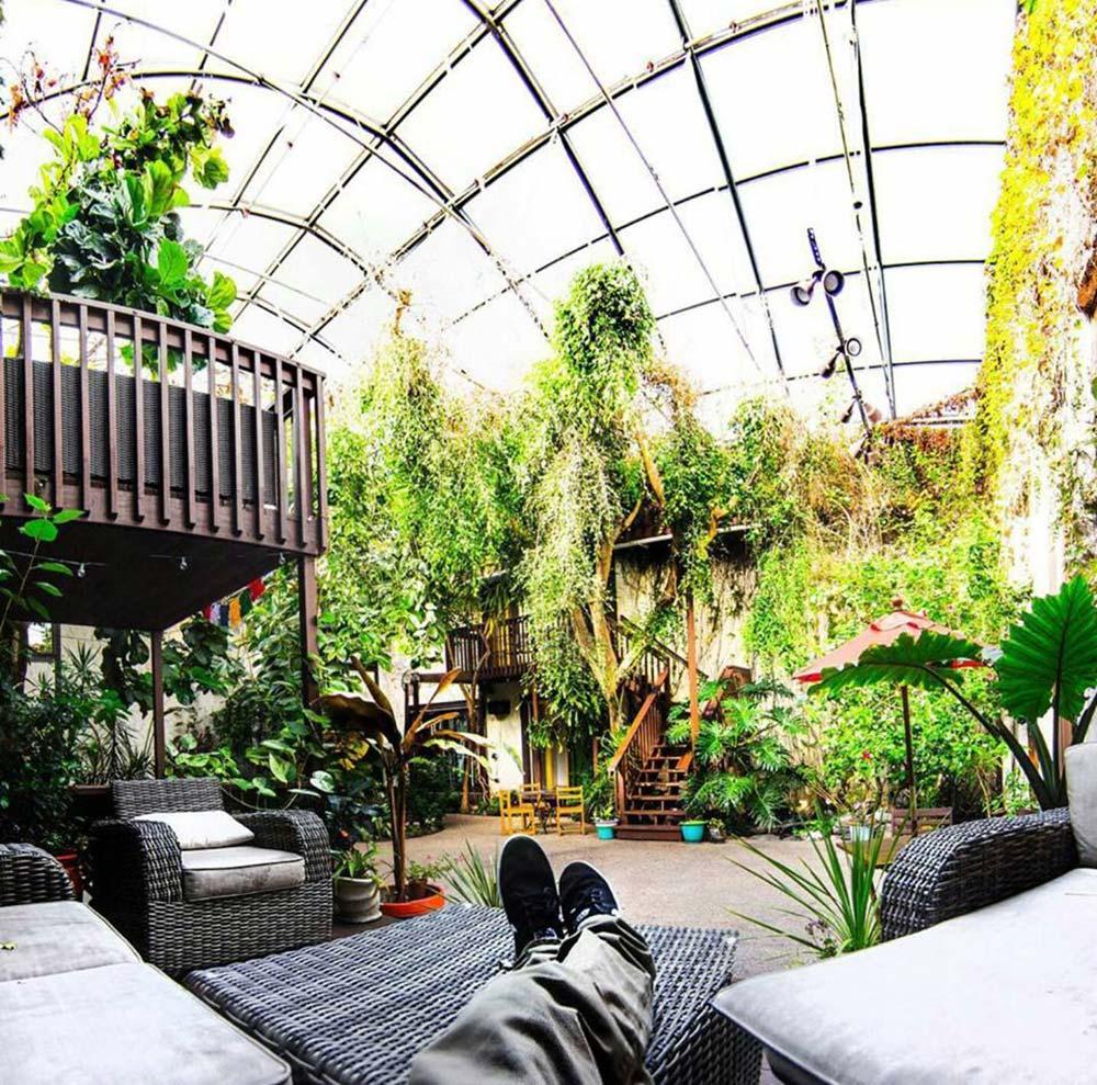 Solarium International Hostel Atrium Relaxing