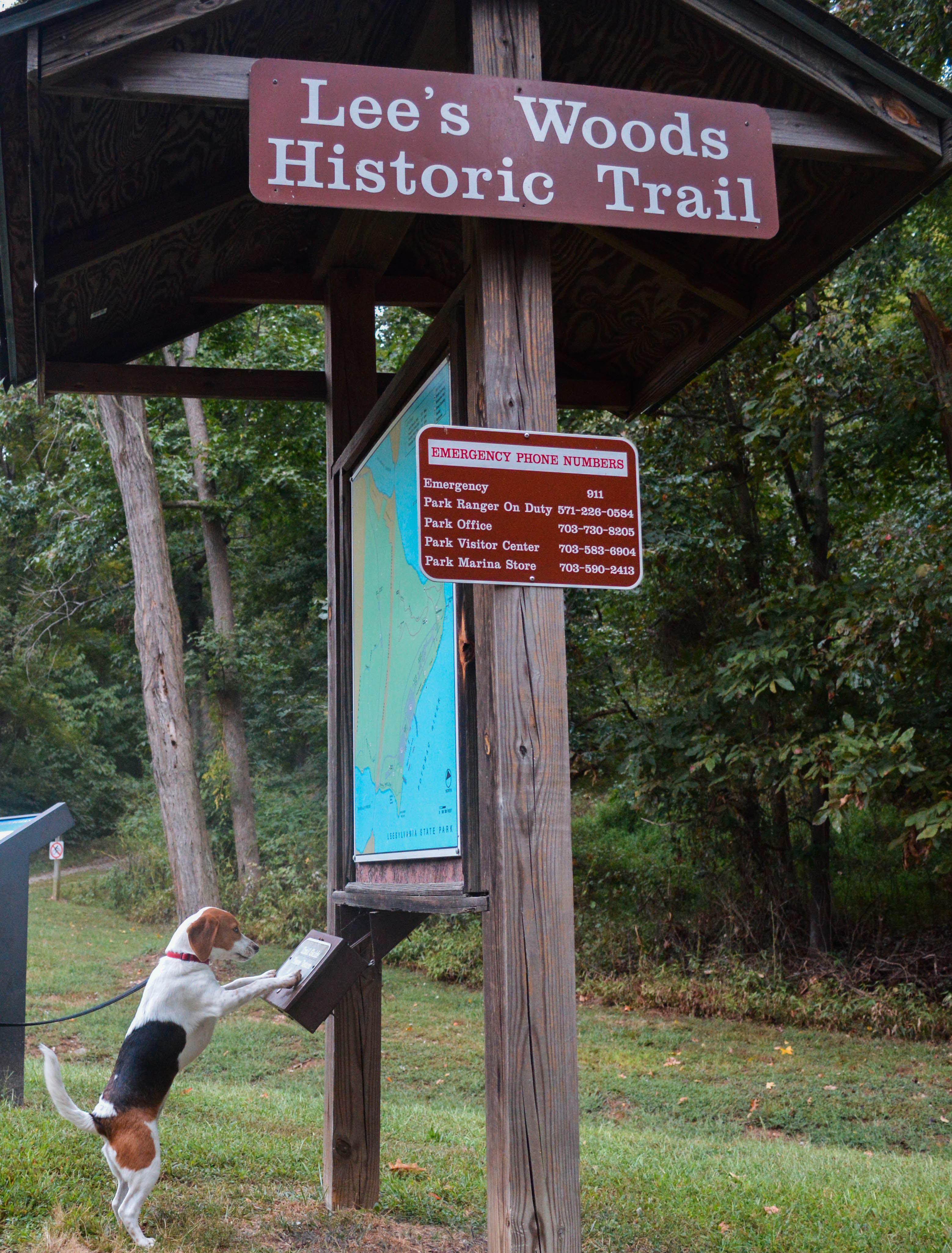 State-parks-for-puppies