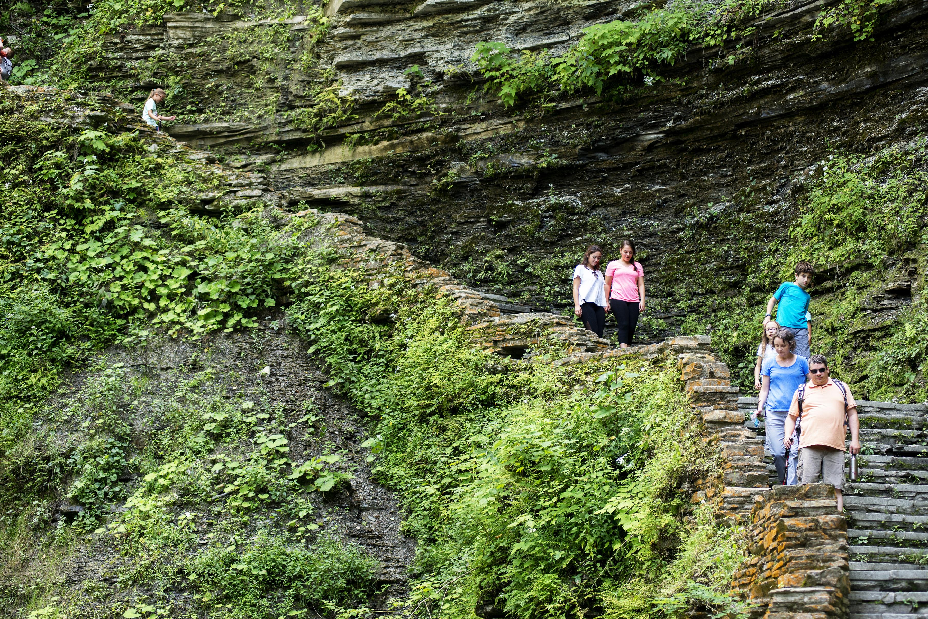 Kanakadea park trail