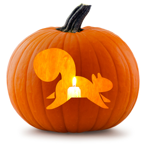 jackolantern-squirrel
