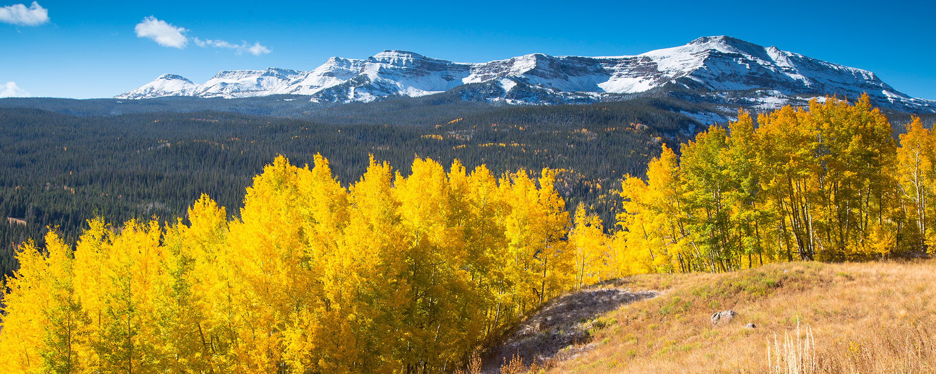 steamboat springs fall vacation packages in the colorado rocky mountains
