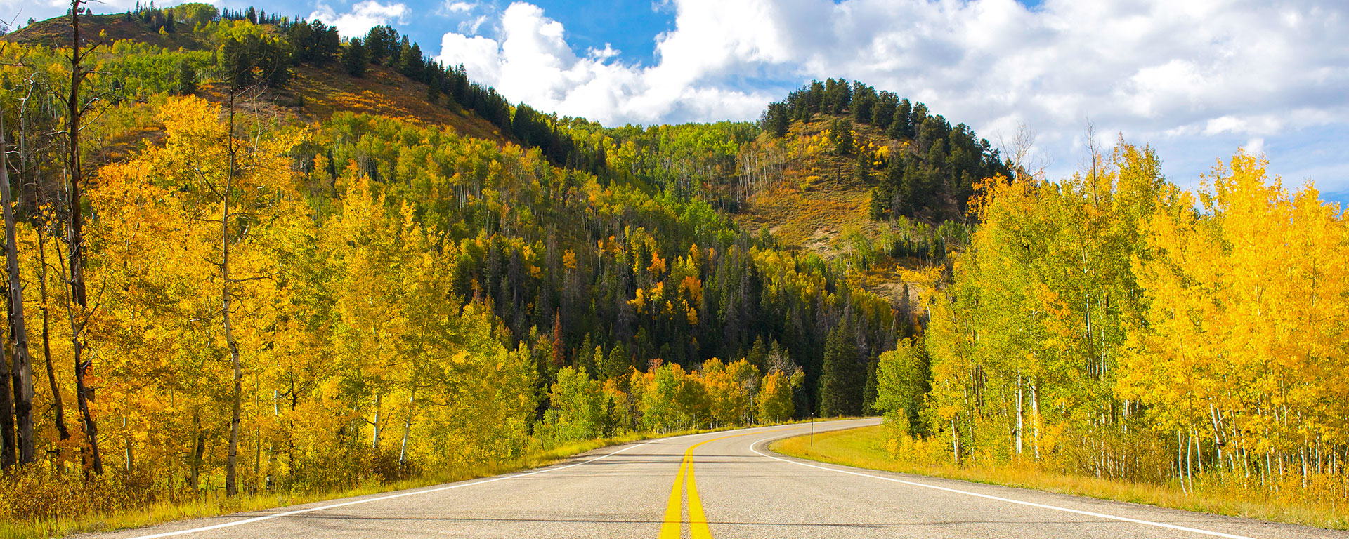 Steamboat Springs Transportation Options   Shuttles   Taxis