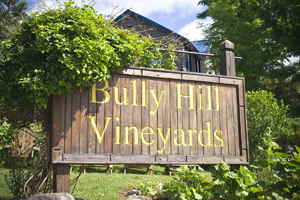Bully Hill Vineyard Tour
