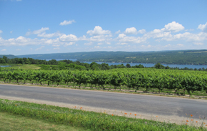 Keuka Lake road