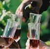 Wineglasses