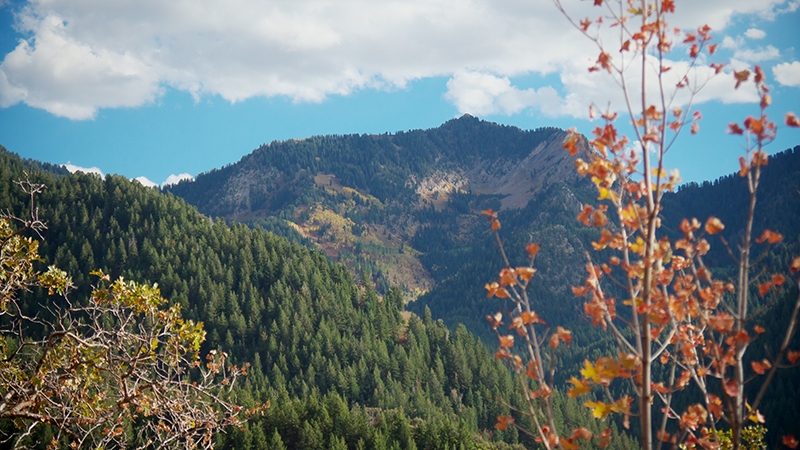 One of many vistas along the Millcreek Pipeline Mountain Bike Trail