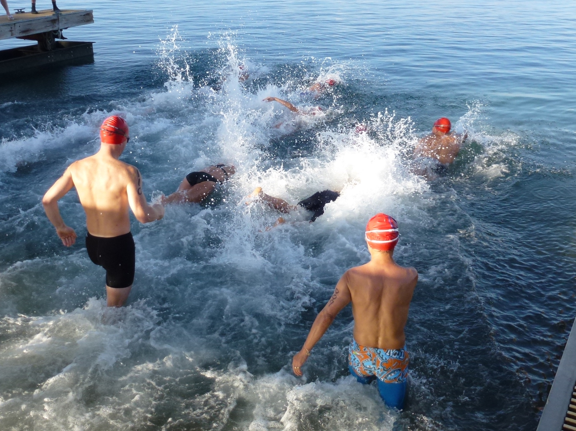 Swimmers enter the water at the start of the race.