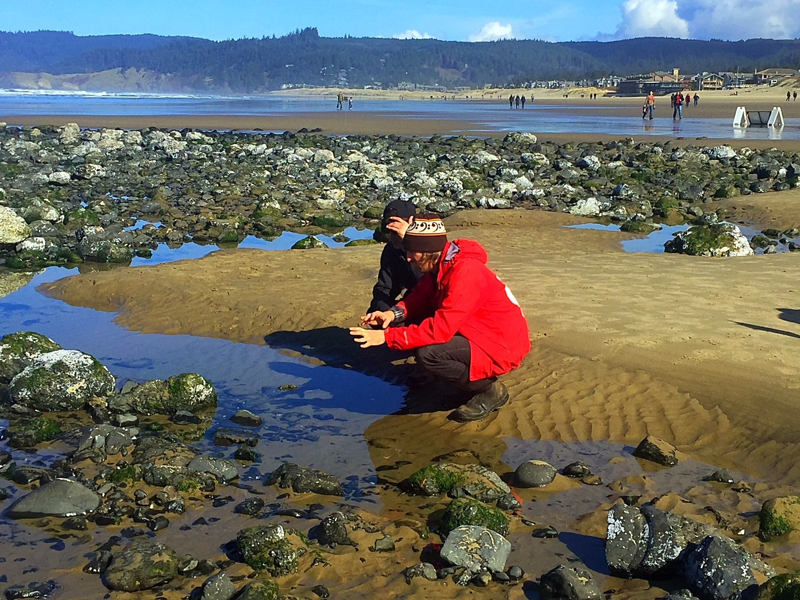 Three Great Spots To Check Out Tidepools That Aren T