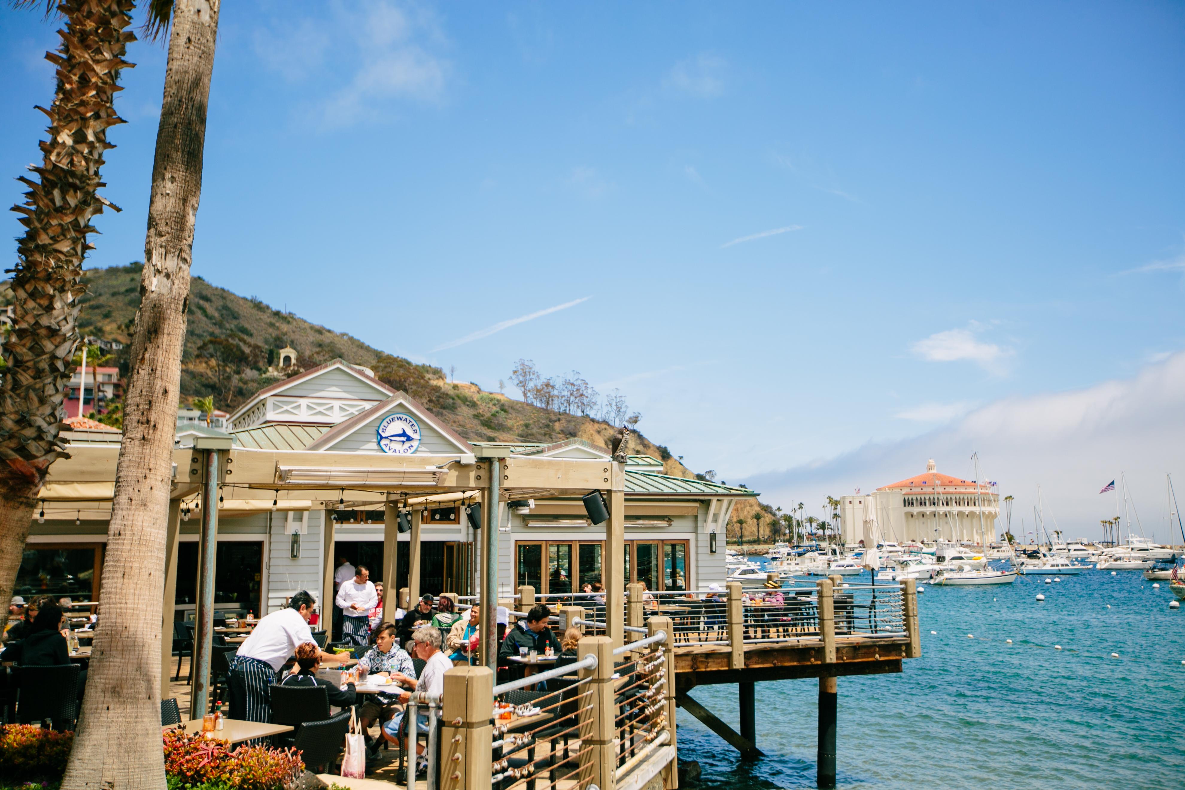 Events Calendar   Catalina Island