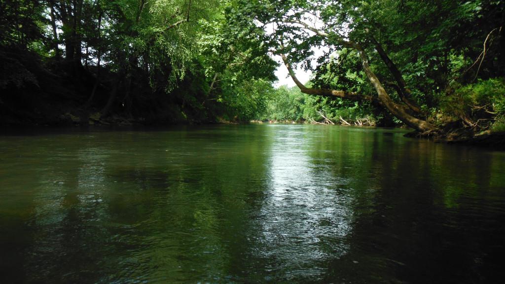DSCF0026 - Flint River