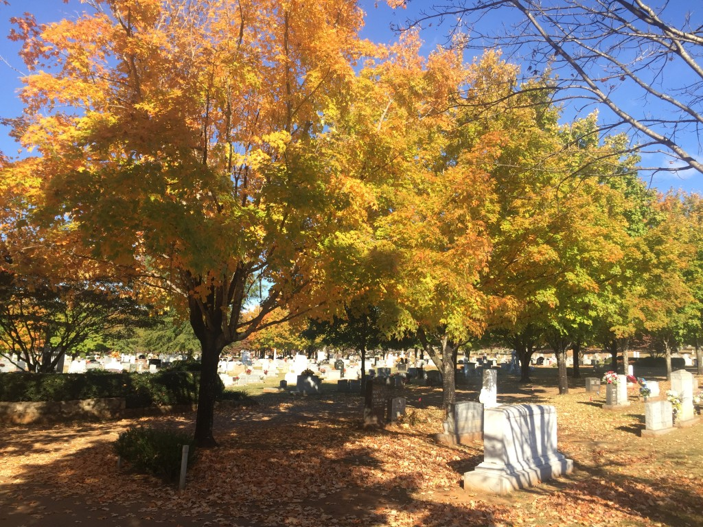 Photo by Heather Smith at Maple Hill Cemetery in Downtown Huntsville