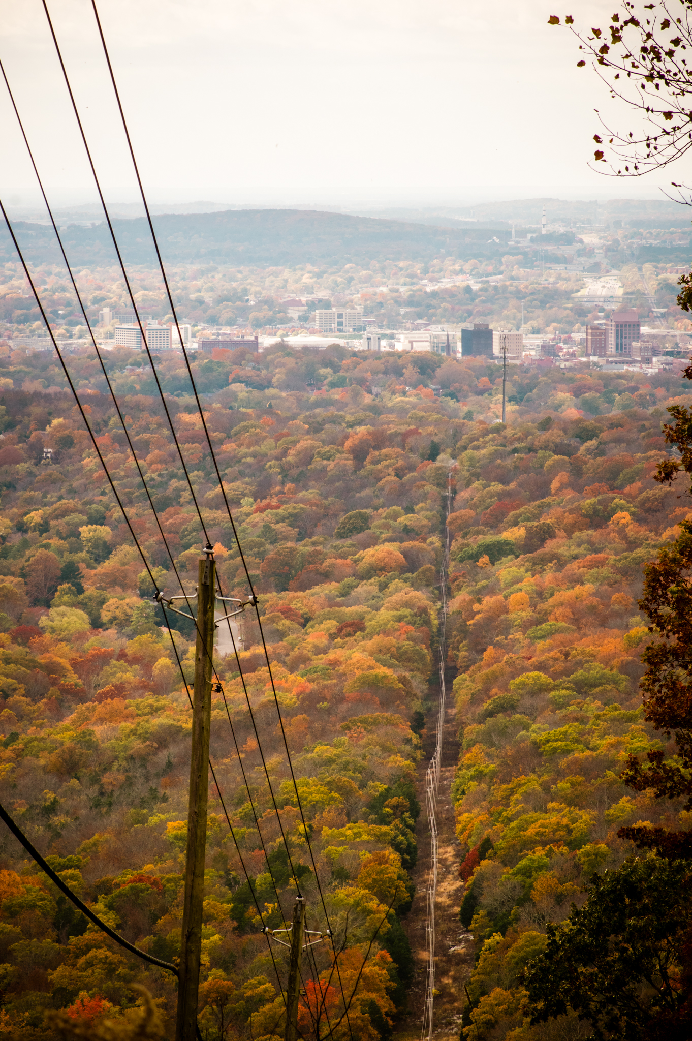3 Huntsville Outdoor Favorites For Every Type of Nature Lover via iHeartHsv.com