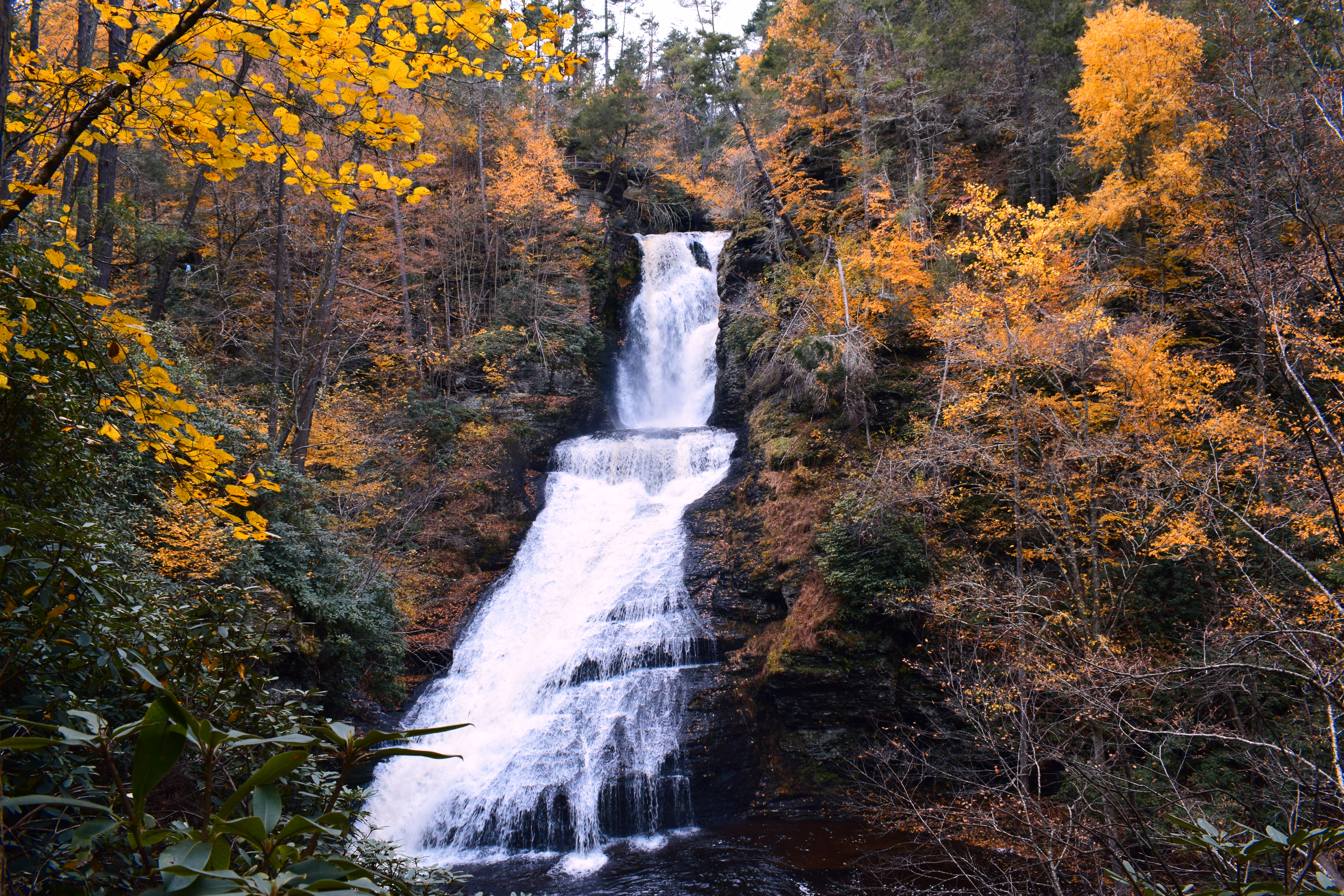 Poconos Fall Foliage Forecast | When to See the Autumn Colors