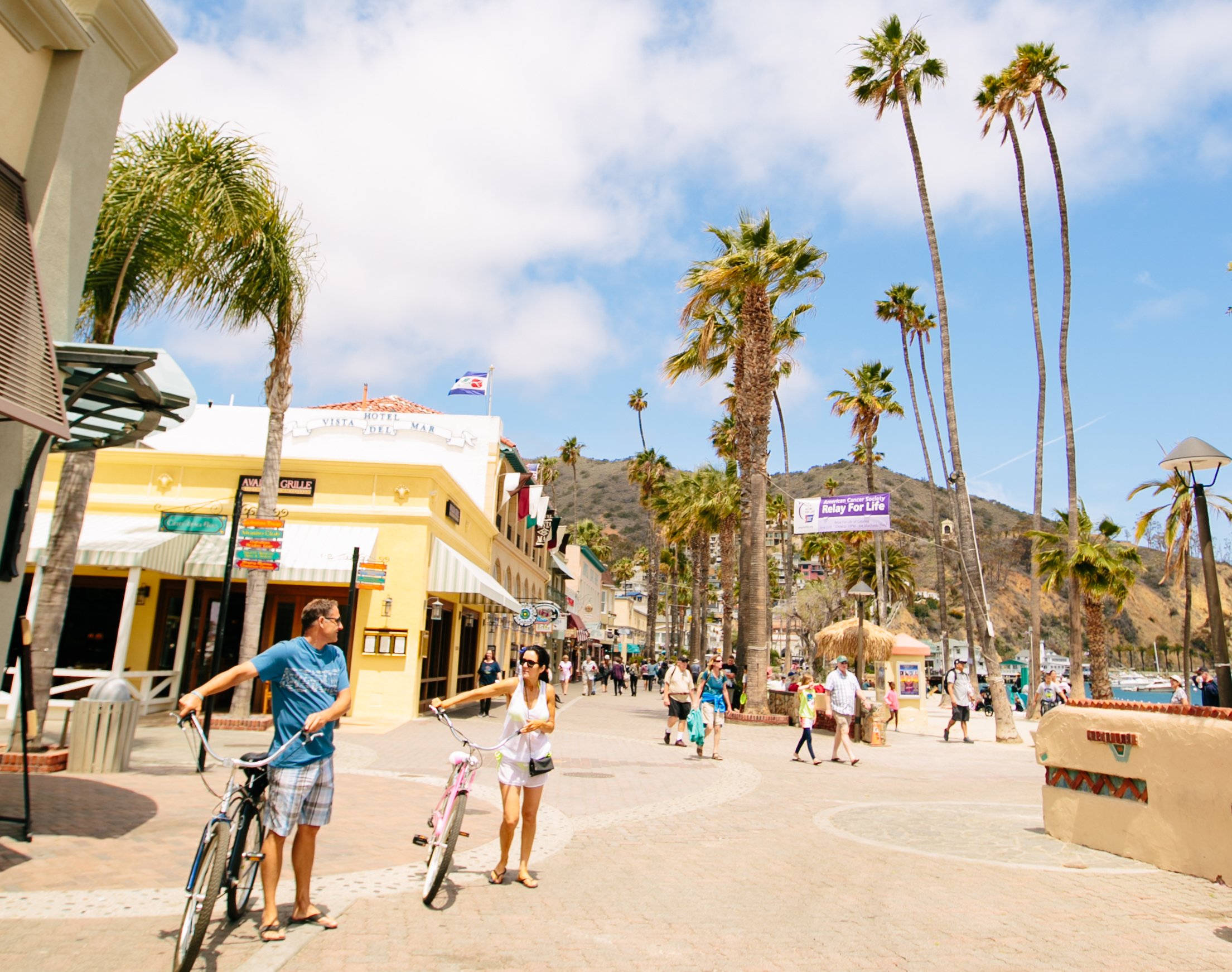 Contact The Santa Catalina Island Company Visit Catalina Island