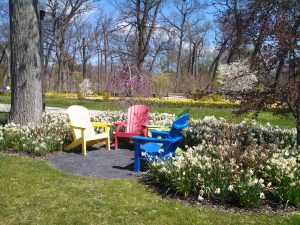 When the weather's nice, take a good book to Wellfield Botanic Gardens for some literature and nature, all at once.