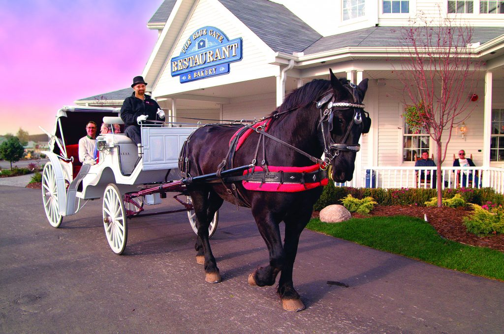 The Blue Gate offers carriage rides among its many products and services that delight visitors to its Shipshewana location.