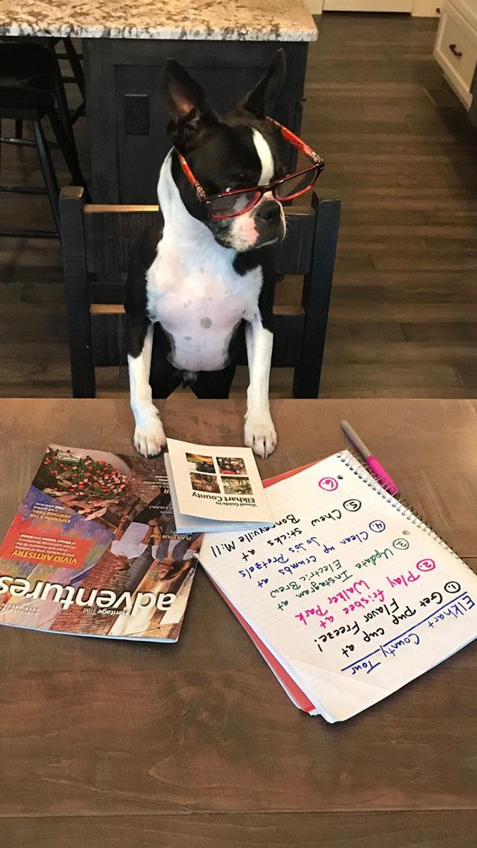 Vacation Planning Vito