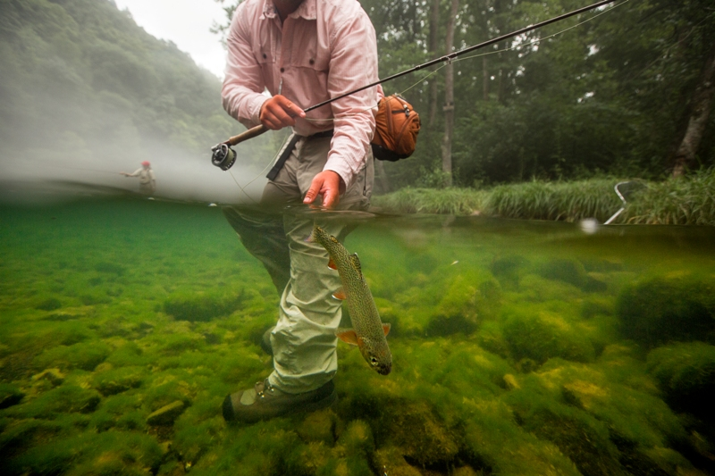 Fishing guide, Patrick Sessoms, releases a rainbow trout back into the waters of the Watauga River.