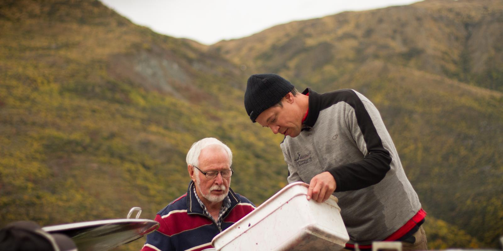 Alan Brady in Queenstown wine harvest