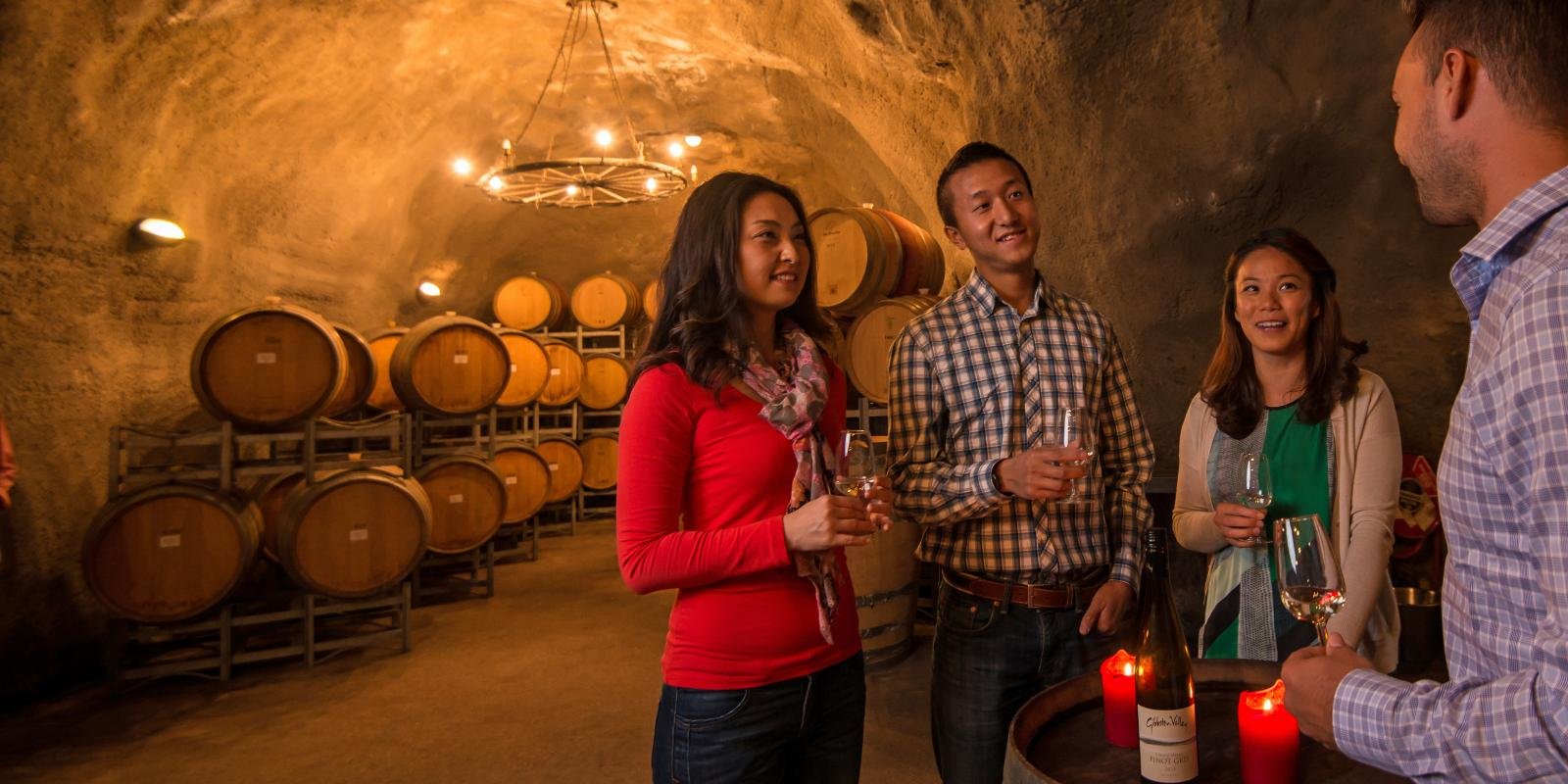 Wine-Cave-Gibbston-Valley-Queenstown