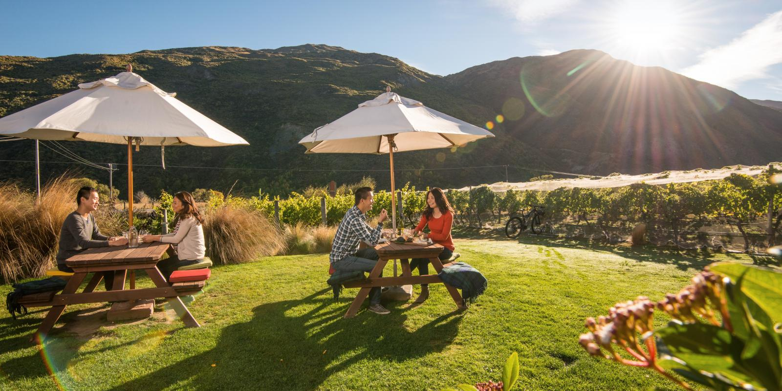 Join a wine tour in Gibbston Queenstown