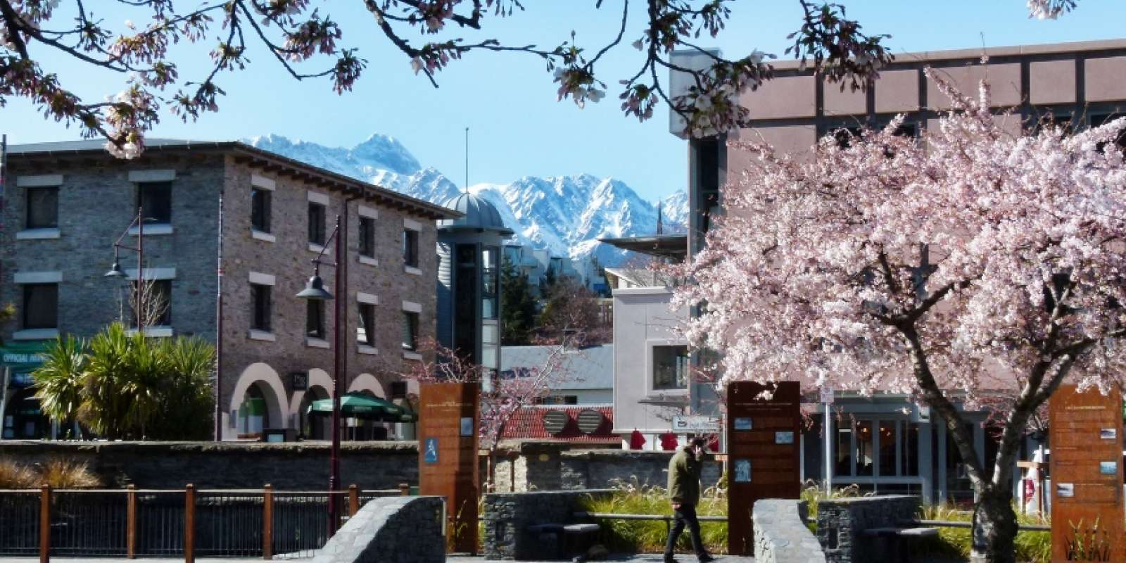 Spring Blossoms on the Village Green, Queenstown