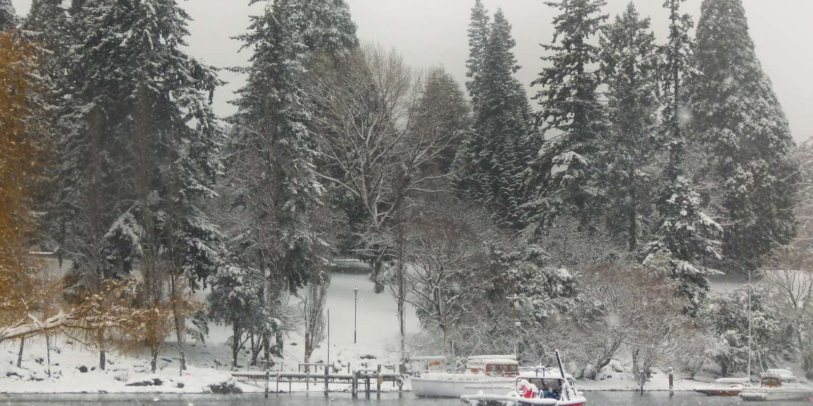 The Queenstown Gardens covered in snow