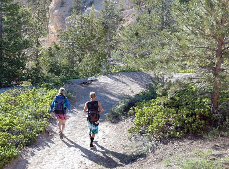 Enjoy a rim trail in Bryce Canyon