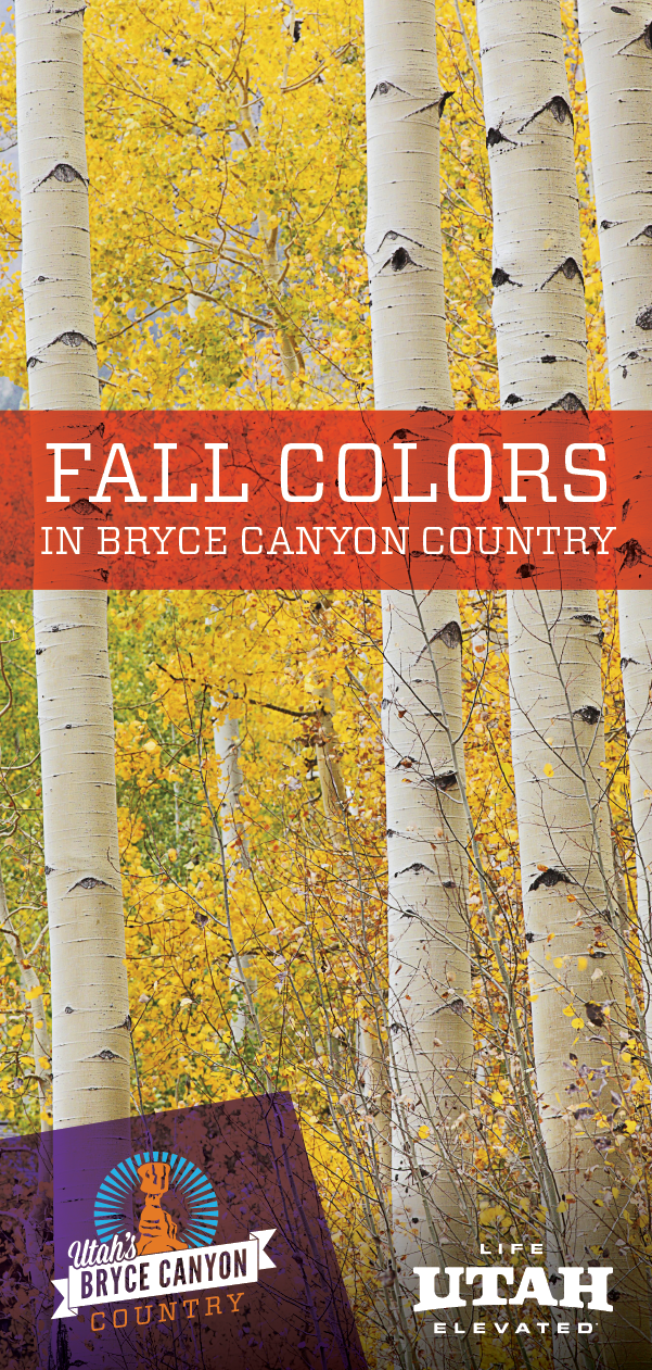 See fall leaves in Bryce Canyon Country where we have national and state parks, a national monument and national forest.