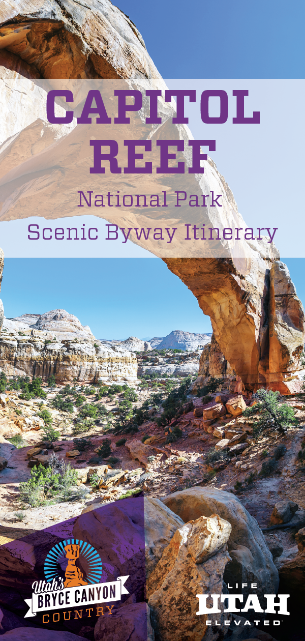 Capitol Reef National Park dazzles adventurers with stunning multi-colored rock formations viewable from scenic byways.
