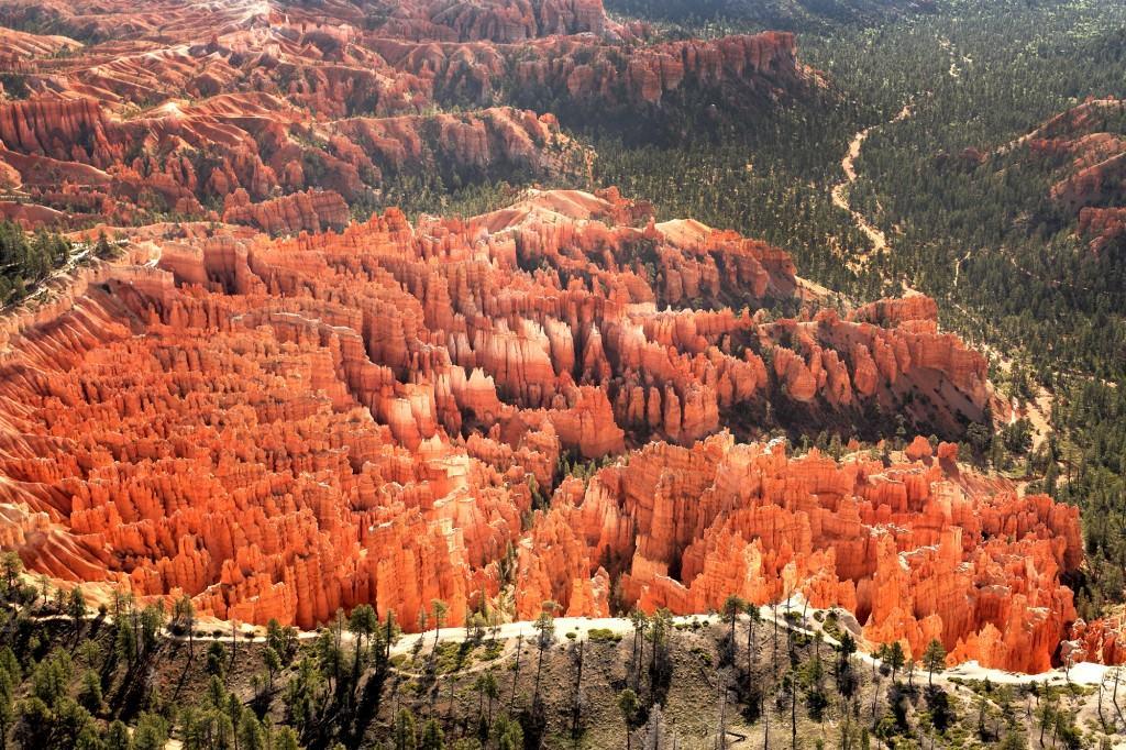 Bryce Canyon View (1)