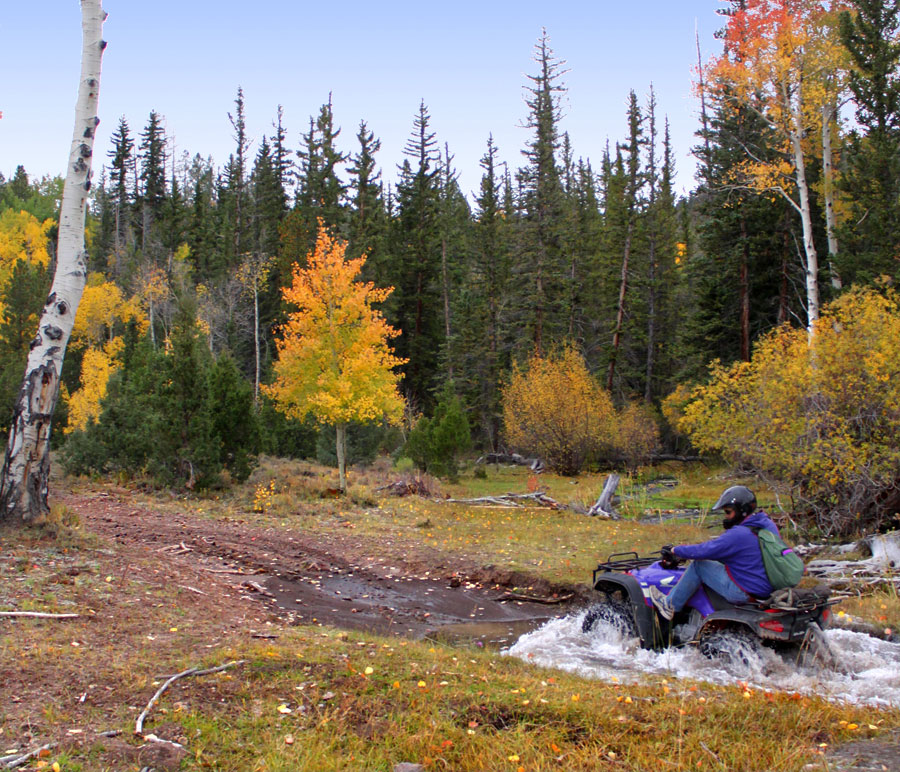 ATV riding in fall colors