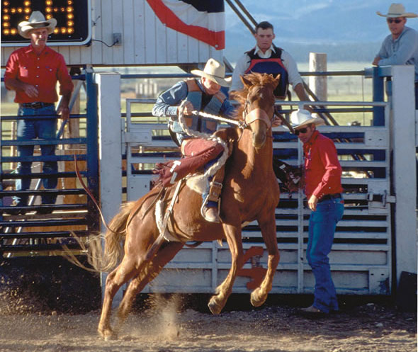 Bryce Canyon Rodeo