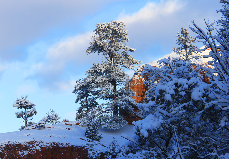 Bryce Canyon Country Winter Utah