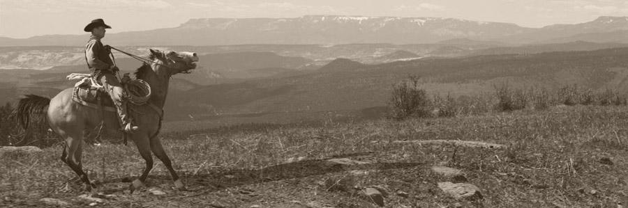 An image of a cowboy riding the Boulder Mountain area near Boulder and Escalante, Utah