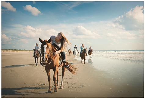 Ride horses on the beach at Inlet Point Plantation.