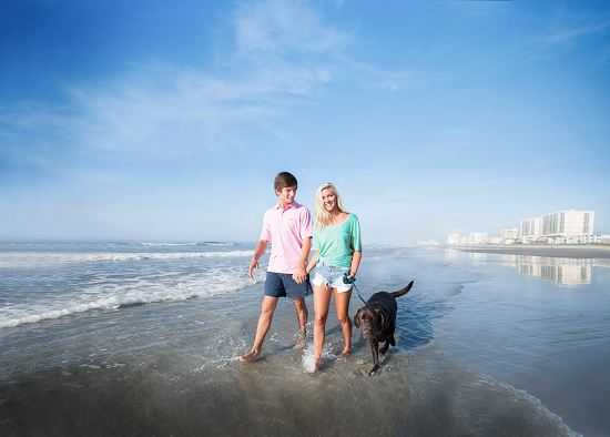 Bring your dog on a vacation to North Myrtle Beach.