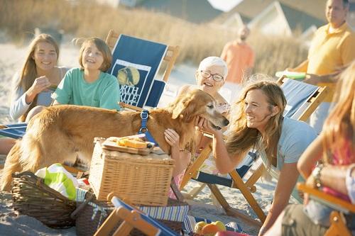 Dog Friendly Restaurants in North Myrtle Beach