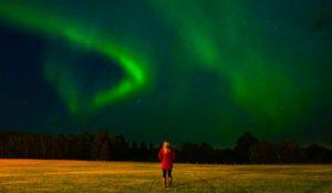 Saskatoon Northern Lights